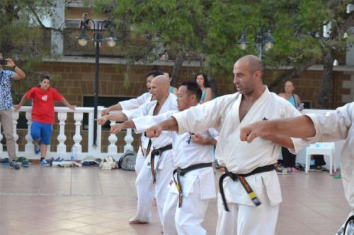 REPORT FORM SHINKYOKUSHIN ITALIAN SUMMER CAMP 2014